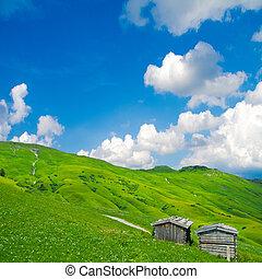 rural, alpin, paysage