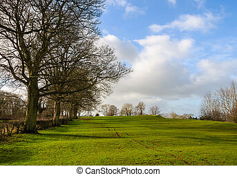 rural, angleterre, paysage hiver