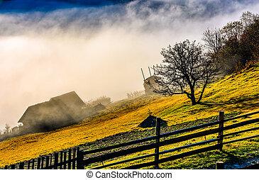 rural area at foggy autumn sunrise - rural area on hillside...