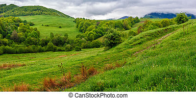 rural area in Carpathian valley - rural area in the...