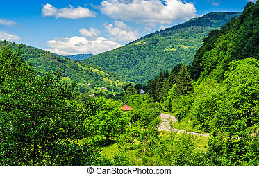 rural area in Carpathian valley - village in the beautiful...