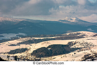 rural area in winter Carpathians. agricultural fields and...