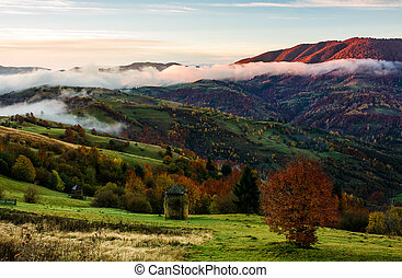 rural area on foggy autumn morning. gorgeous landscape with...