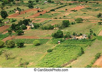 Rural Area - Uganda, Africa