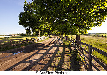 rural areas - the wooden fence which is fencing off the road...