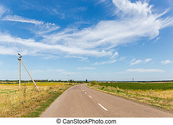 Rural asphalt road among the fields against sky with clouds...