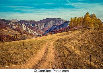 Rural autumn landscape with a dirt road
