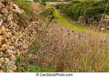 rural background rock wall