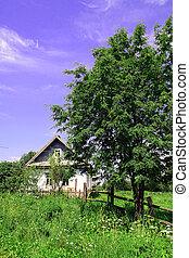 rural, casa