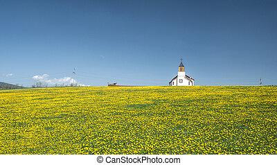 Rural church in a field