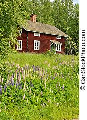 Rural cottage and garden