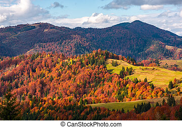 rural countryside in autumn. beautiful scenery in mountains...
