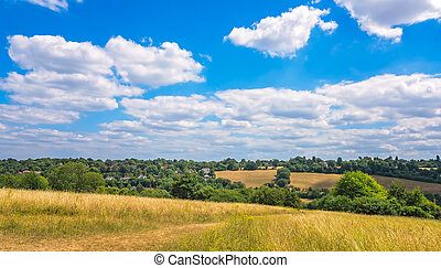 Rural countryside landscape of Surrey - Hills, grassland and...