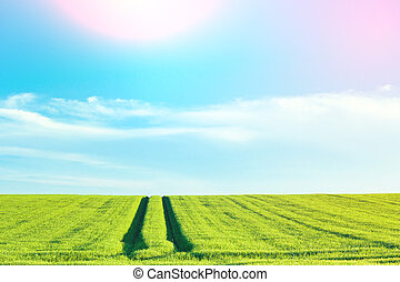 Rural countryside landscape with blue sky
