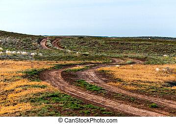 Rural dirt road landscape in steppe or desert.