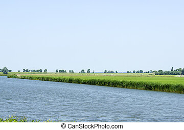 Rural dutch landscape with sheep and a small river