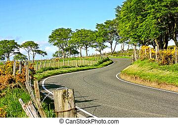 Rural empty road in Springtime