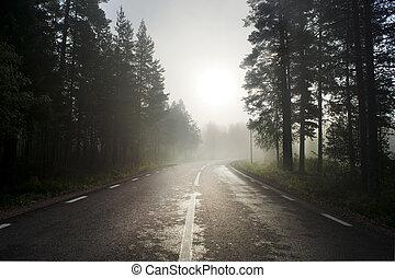 rural, estrada asfalto