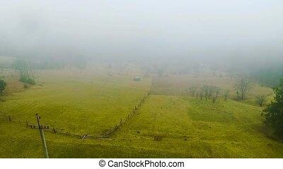 Rural farm meadow under the mist aerial view