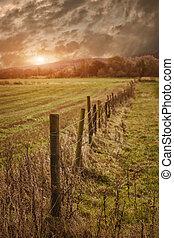 Rural farmland fence