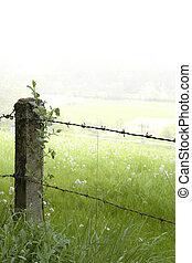 rural fence detail