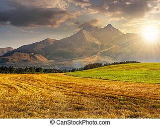 rural field in Tatra mountains at sunset - Tatra mountains...