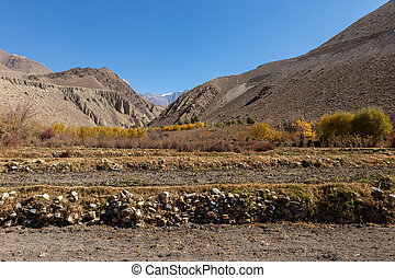 Rural fields in the autumn, Mustang, Nepal