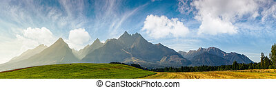 rural fields near Tatra Mountains in summer time. beautiful...