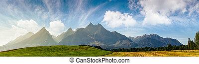 rural fields near Tatra Mountains in summer time