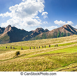 Rural fields near the high mountains - Composite Landscape...