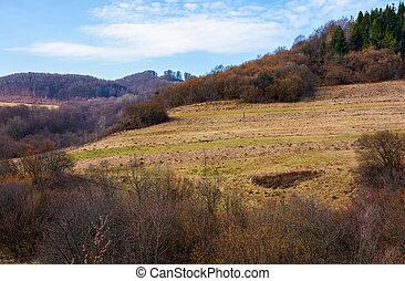 rural fields on mountain slopes in springtime. lovely...