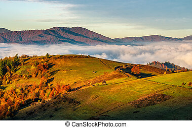 rural fields over the clouds in mountains at sunrise - rural...