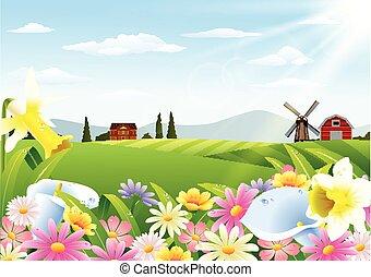rural, fleurs, paysage