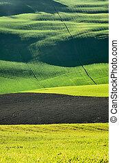 Rural grass field landscape