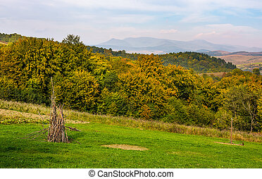 rural grassy fields on Carpathian hills - rural grassy...