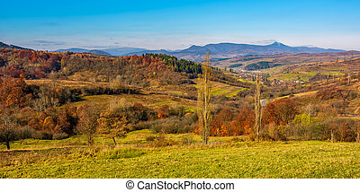 rural grassy fields on hills in gorgeous mountains
