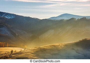 rural hill in glowing fog. beautiful autumn scenery in...