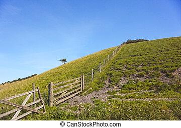 rural hillside