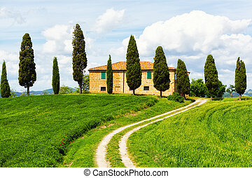 Rural house and cypress avenue, typical landscape of Tuscany...