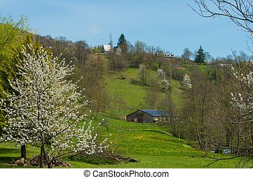 Rural houses on a hill in beautiful landscape