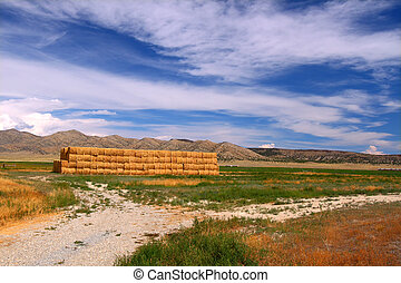 Rural agricultural scenery of Idaho on a sunny summer day.