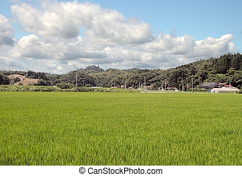 Rural Japanese landscape