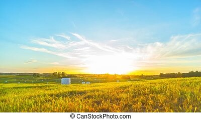 Rural landscape and sunset