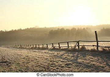 Rural landscape at dawn