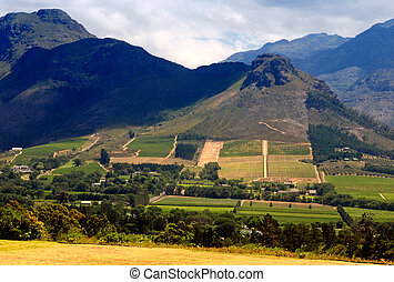 Rural landscape, Capetown province (South Africa)