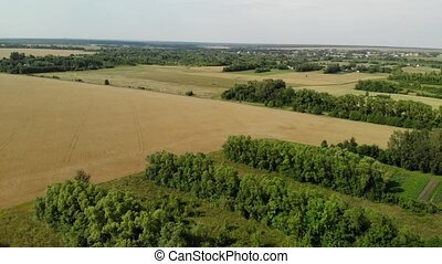 Rural landscape from height in August in Russia - Rural...