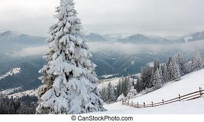 Rural landscape. Happy New Year. frozen very beautiful...