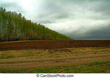 rural landscape in early spring on a cloudy day