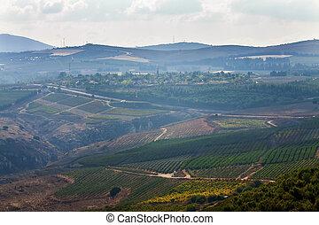 rural landscape in Israel