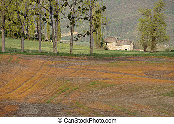 Traditionnal Savoyard stone house (dauphinois) with poplars and orange field againt mountain background